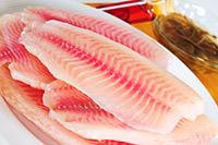 protein fish
